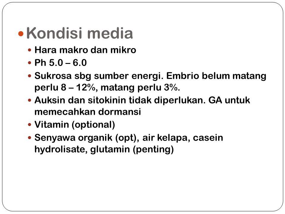 Kondisi media Hara makro dan mikro Ph 5.0 – 6.0 Sukrosa sbg sumber energi.
