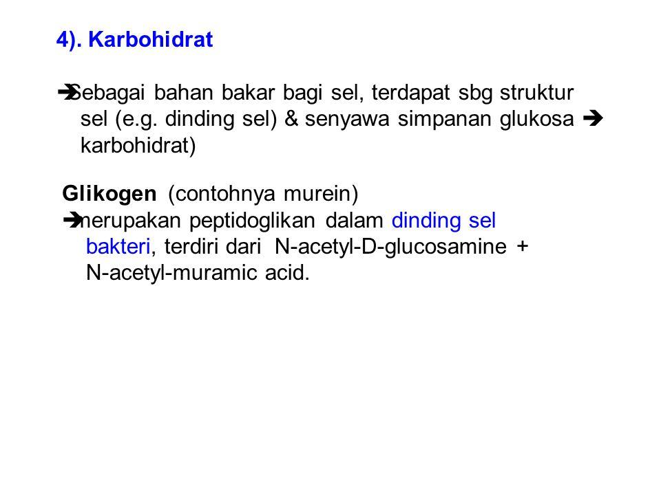 4). Karbohidrat  Sebagai bahan bakar bagi sel, terdapat sbg struktur sel (e.g. dinding sel) & senyawa simpanan glukosa  karbohidrat) Glikogen (conto