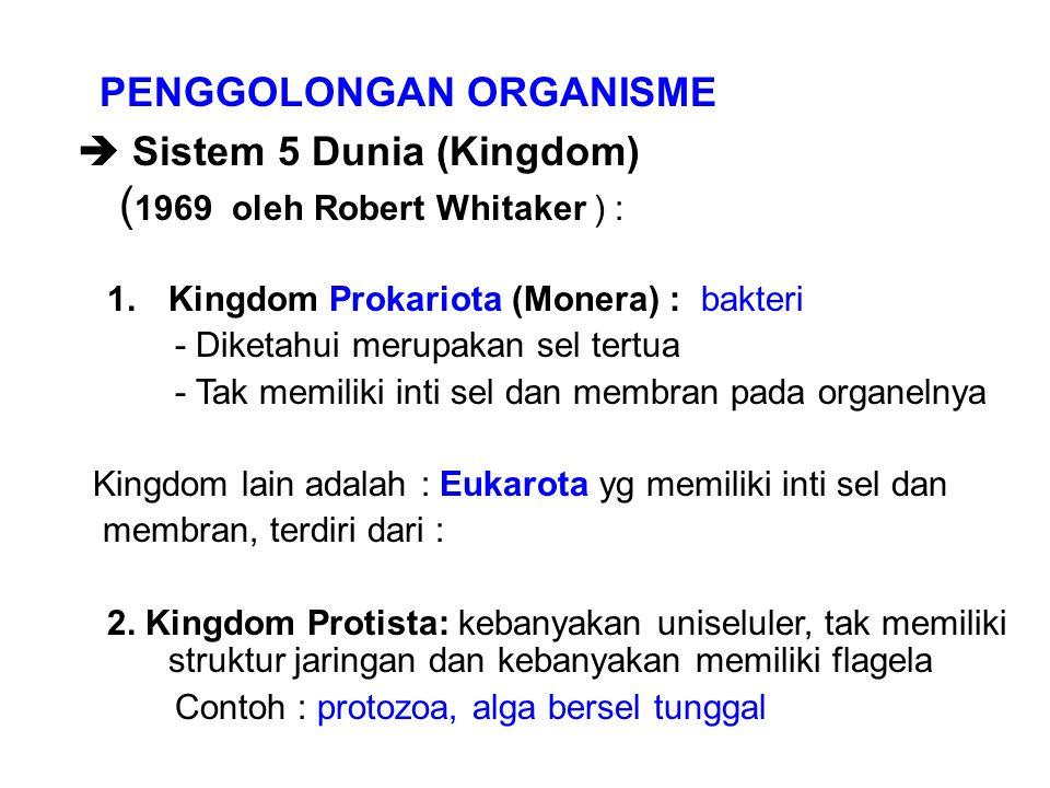 PENGGOLONGAN ORGANISME  Sistem 5 Dunia (Kingdom) ( 1969 oleh Robert Whitaker ) : 1.Kingdom Prokariota (Monera) : bakteri - Diketahui merupakan sel te