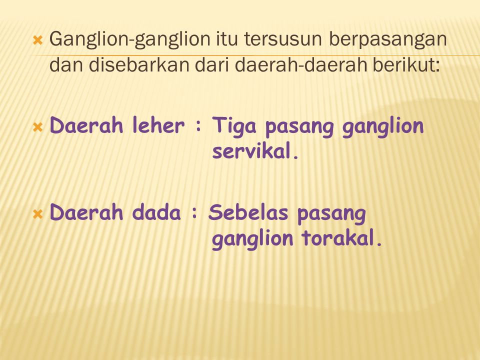  Ganglion-ganglion itu tersusun berpasangan dan disebarkan dari daerah-daerah berikut:  Daerah leher : Tiga pasang ganglion servikal.