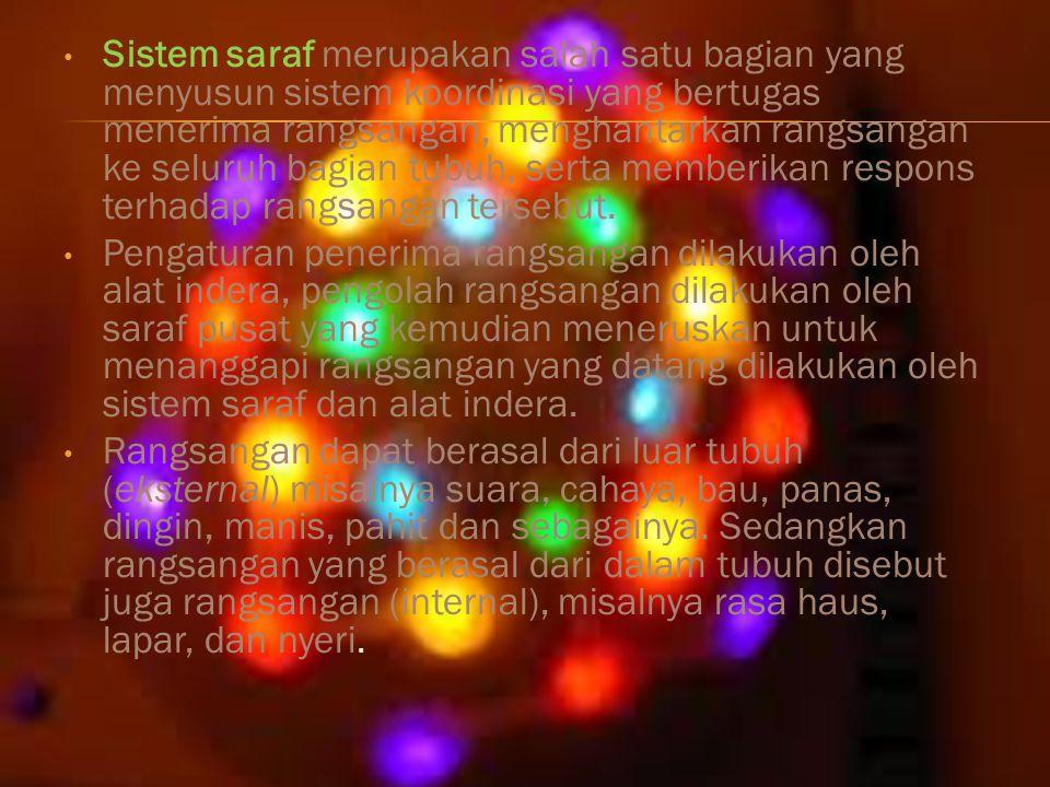 Sistem saraf yang terdapat pada tubuh manusia terdiri atas unit-unit terkecil yang disebut neuron (sel saraf).