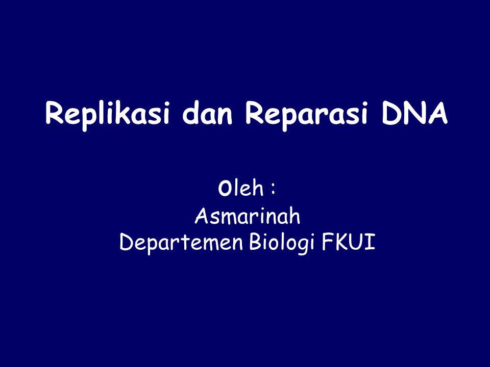 Replikasi dan Reparasi DNA o leh : Asmarinah Departemen Biologi FKUI