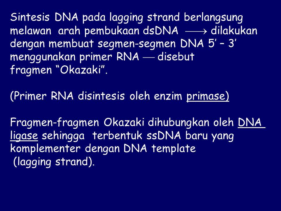 Sintesis DNA pada lagging strand berlangsung melawan arah pembukaan dsDNA  dilakukan dengan membuat segmen-segmen DNA 5' – 3' menggunakan primer RNA  disebut fragmen Okazaki .