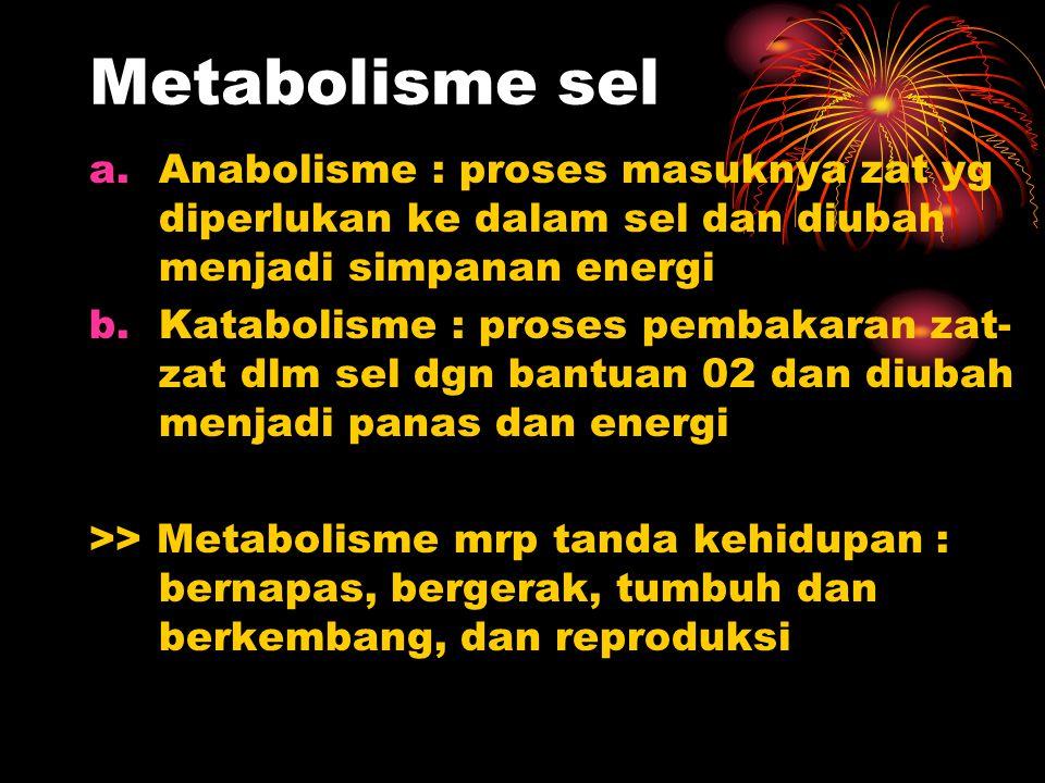 Metabolisme sel a.Anabolisme : proses masuknya zat yg diperlukan ke dalam sel dan diubah menjadi simpanan energi b.Katabolisme : proses pembakaran zat- zat dlm sel dgn bantuan 02 dan diubah menjadi panas dan energi >> Metabolisme mrp tanda kehidupan : bernapas, bergerak, tumbuh dan berkembang, dan reproduksi