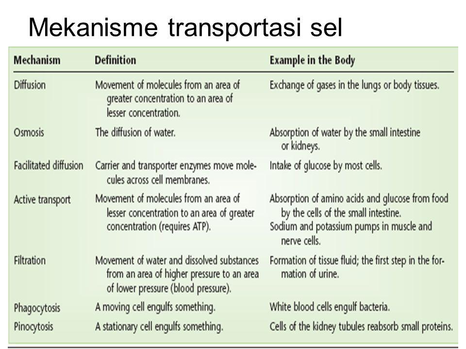 Mekanisme transportasi sel