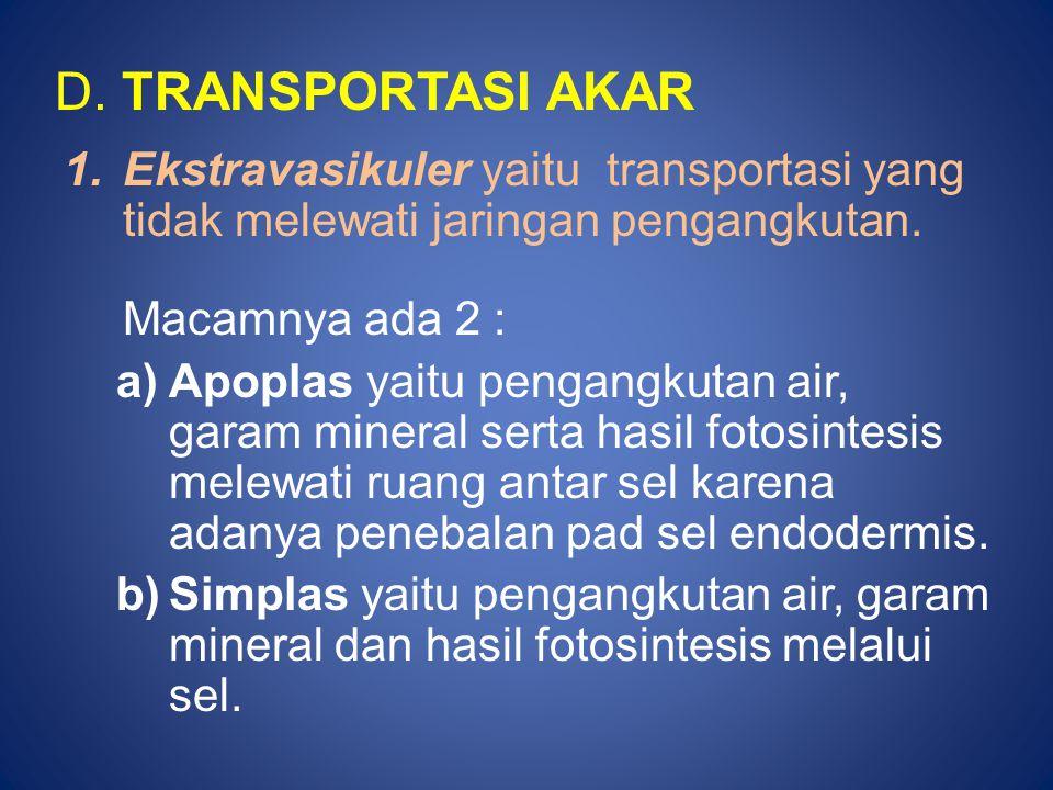 D. TRANSPORTASI AKAR 1.Ekstravasikuler yaitu transportasi yang tidak melewati jaringan pengangkutan. Macamnya ada 2 : a)Apoplas yaitu pengangkutan air