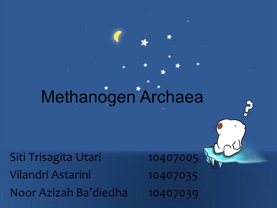 Methanogen Archaea Siti Trisagita Utari 10407005 Vilandri Astarini 10407035 Noor Azizah Ba'diedha 10407039