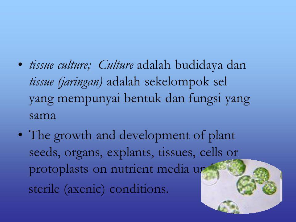 tissue culture; Culture adalah budidaya dan tissue (jaringan) adalah sekelompok sel yang mempunyai bentuk dan fungsi yang sama The growth and development of plant seeds, organs, explants, tissues, cells or protoplasts on nutrient media under sterile (axenic) conditions.