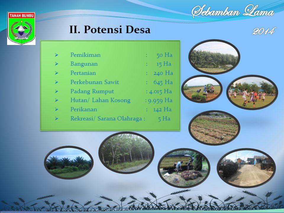 II. Potensi Desa  Pemikiman : 50 Ha  Bangunan : 15 Ha  Pertanian : 240 Ha  Perkebunan Sawit : 645 Ha  Padang Rumput : 4.015 Ha  Hutan/ Lahan Kos