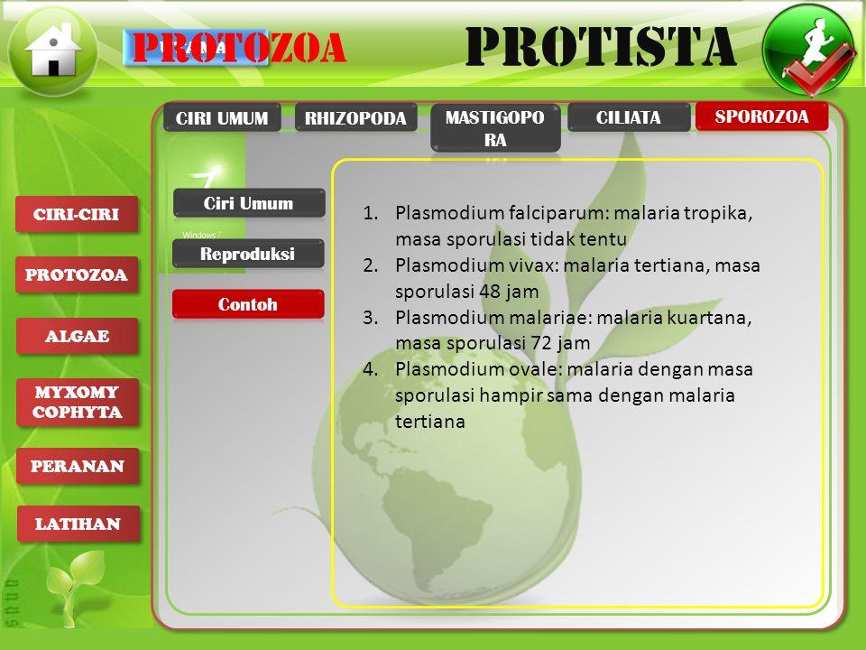 UTAMA PROTISTA CIRI-CIRI PROTOZOA ALGAE MYXOMY COPHYTA MYXOMY COPHYTA PERANAN LATIHAN 1.Plasmodium falciparum: malaria tropika, masa sporulasi tidak t