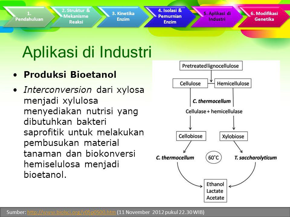 Aplikasi di Industri Produksi Bioetanol Interconversion dari xylosa menjadi xylulosa menyediakan nutrisi yang dibutuhkan bakteri saprofitik untuk melakukan pembusukan material tanaman dan biokonversi hemiselulosa menjadi bioetanol.