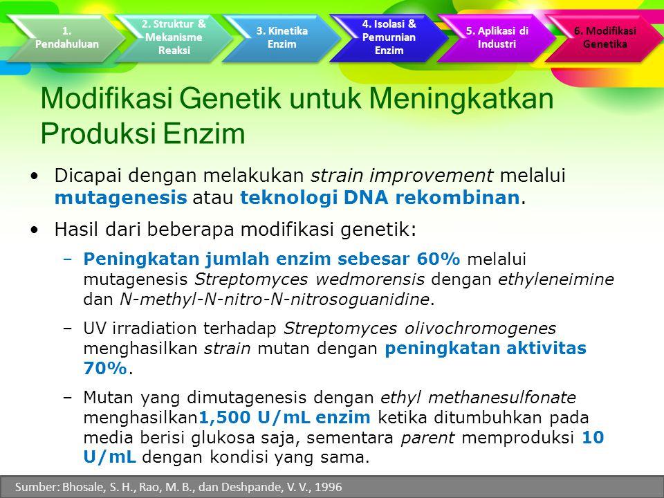 Modifikasi Genetik untuk Meningkatkan Produksi Enzim Dicapai dengan melakukan strain improvement melalui mutagenesis atau teknologi DNA rekombinan.
