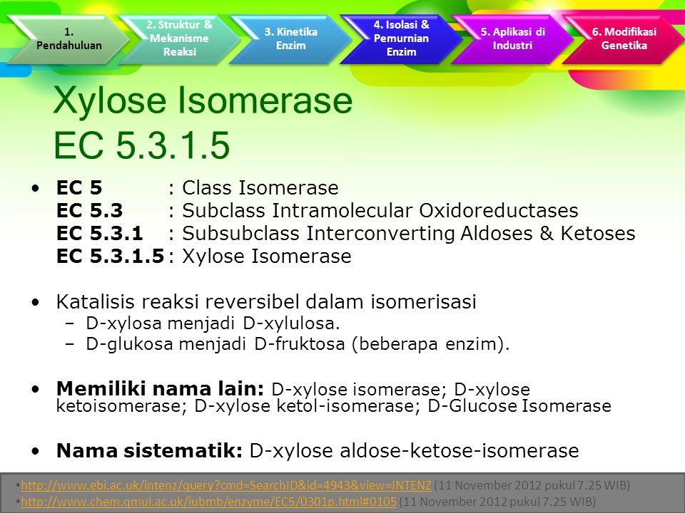 Xylose Isomerase EC 5.3.1.5 EC 5 : Class Isomerase EC 5.3 : Subclass Intramolecular Oxidoreductases EC 5.3.1 : Subsubclass Interconverting Aldoses & Ketoses EC 5.3.1.5: Xylose Isomerase Katalisis reaksi reversibel dalam isomerisasi –D-xylosa menjadi D-xylulosa.