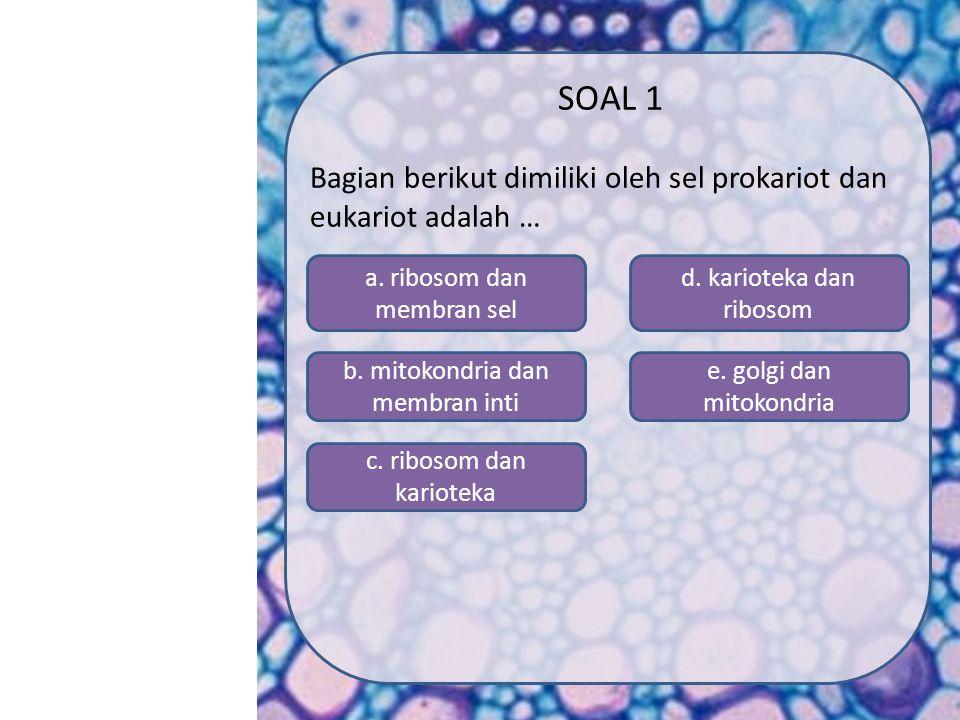 SK/KD MATERI SIMULASI VIDEO SOAL PROFIL MENU Petunjuk pengerjaan: 1.Klik tombol start untuk memulai latihan 2.Pilih jawaban yang benar dengan mengekli