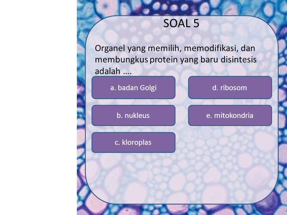 SK/KD MATERI SIMULASI VIDEO SOAL PROFIL MENU a. Badan golgi e. mitokondria d. ribosom c. kloroplas b. nukleus SOAL 4 Materi genetik sebuah sel eukario