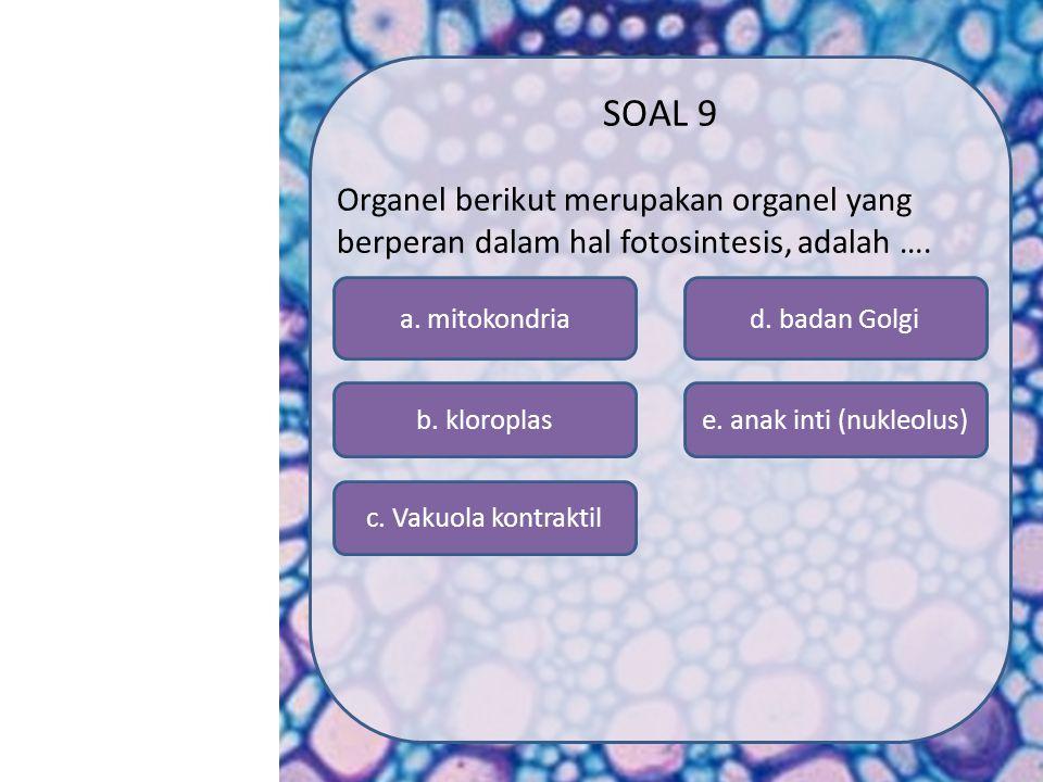 SK/KD MATERI SIMULASI VIDEO SOAL PROFIL MENU a. lisosom e. mitokondria d. badan Golgi c. silia b. RE halus SOAL 8 Organel yang dibatasi membran dan be