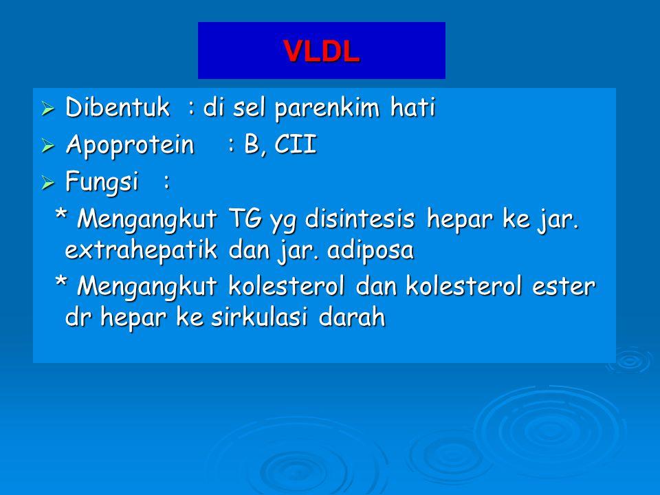 VLDL  Dibentuk : di sel parenkim hati  Apoprotein : B, CII  Fungsi : * Mengangkut TG yg disintesis hepar ke jar. extrahepatik dan jar. adiposa * Me