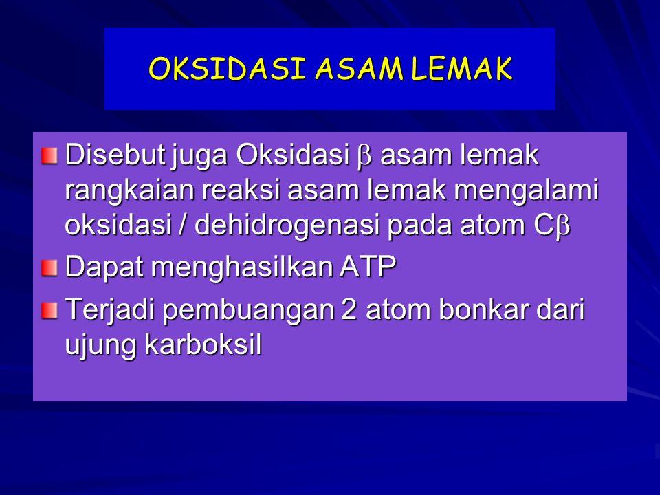 OKSIDASI ASAM LEMAK Disebut juga Oksidasi  asam lemak rangkaian reaksi asam lemak mengalami oksidasi / dehidrogenasi pada atom C  Dapat menghasilkan