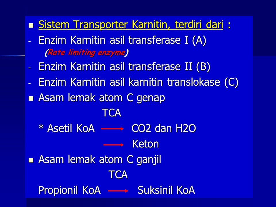 Sistem Transporter Karnitin, terdiri dari : Sistem Transporter Karnitin, terdiri dari : - Enzim Karnitin asil transferase I (A) (Rate limiting enzyme) (Rate limiting enzyme) - Enzim Karnitin asil transferase II (B) - Enzim Karnitin asil karnitin translokase (C) Asam lemak atom C genap Asam lemak atom C genap TCA TCA * Asetil KoA CO2 dan H2O * Asetil KoA CO2 dan H2O Keton Keton Asam lemak atom C ganjil Asam lemak atom C ganjil TCA TCA Propionil KoA Suksinil KoA Propionil KoA Suksinil KoA