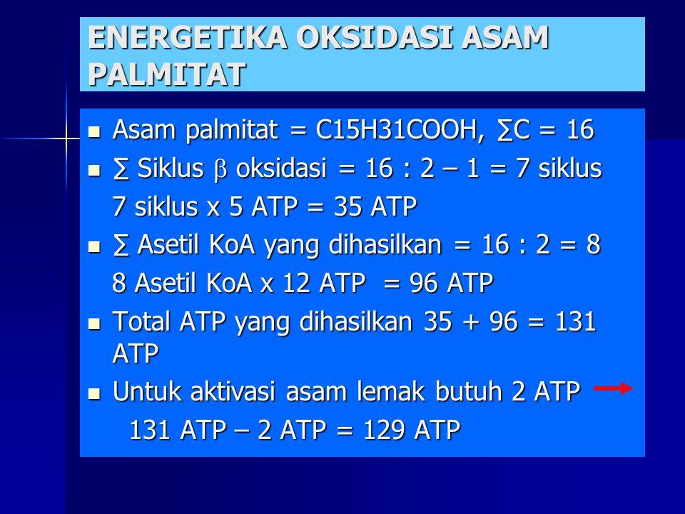 ENERGETIKA OKSIDASI ASAM PALMITAT Asam palmitat = C15H31COOH, ∑C = 16 Asam palmitat = C15H31COOH, ∑C = 16 ∑ Siklus  oksidasi = 16 : 2 – 1 = 7 siklus ∑ Siklus  oksidasi = 16 : 2 – 1 = 7 siklus 7 siklus x 5 ATP = 35 ATP 7 siklus x 5 ATP = 35 ATP ∑ Asetil KoA yang dihasilkan = 16 : 2 = 8 ∑ Asetil KoA yang dihasilkan = 16 : 2 = 8 8 Asetil KoA x 12 ATP = 96 ATP 8 Asetil KoA x 12 ATP = 96 ATP Total ATP yang dihasilkan 35 + 96 = 131 ATP Total ATP yang dihasilkan 35 + 96 = 131 ATP Untuk aktivasi asam lemak butuh 2 ATP Untuk aktivasi asam lemak butuh 2 ATP 131 ATP – 2 ATP = 129 ATP 131 ATP – 2 ATP = 129 ATP