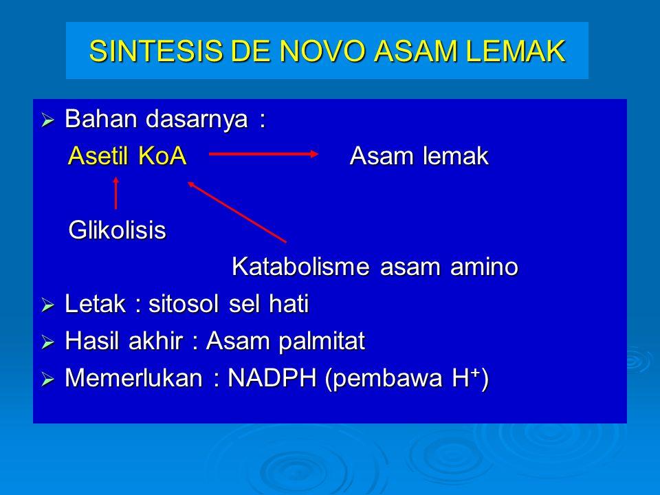 SINTESIS DE NOVO ASAM LEMAK  Bahan dasarnya : Asetil KoA Asam lemak Asetil KoA Asam lemak Glikolisis Glikolisis Katabolisme asam amino Katabolisme asam amino  Letak : sitosol sel hati  Hasil akhir : Asam palmitat  Memerlukan : NADPH (pembawa H + )