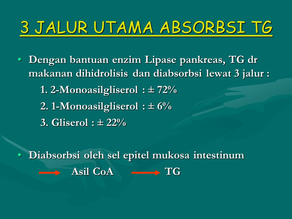 3 JALUR UTAMA ABSORBSI TG Dengan bantuan enzim Lipase pankreas, TG dr makanan dihidrolisis dan diabsorbsi lewat 3 jalur :Dengan bantuan enzim Lipase pankreas, TG dr makanan dihidrolisis dan diabsorbsi lewat 3 jalur : 1.