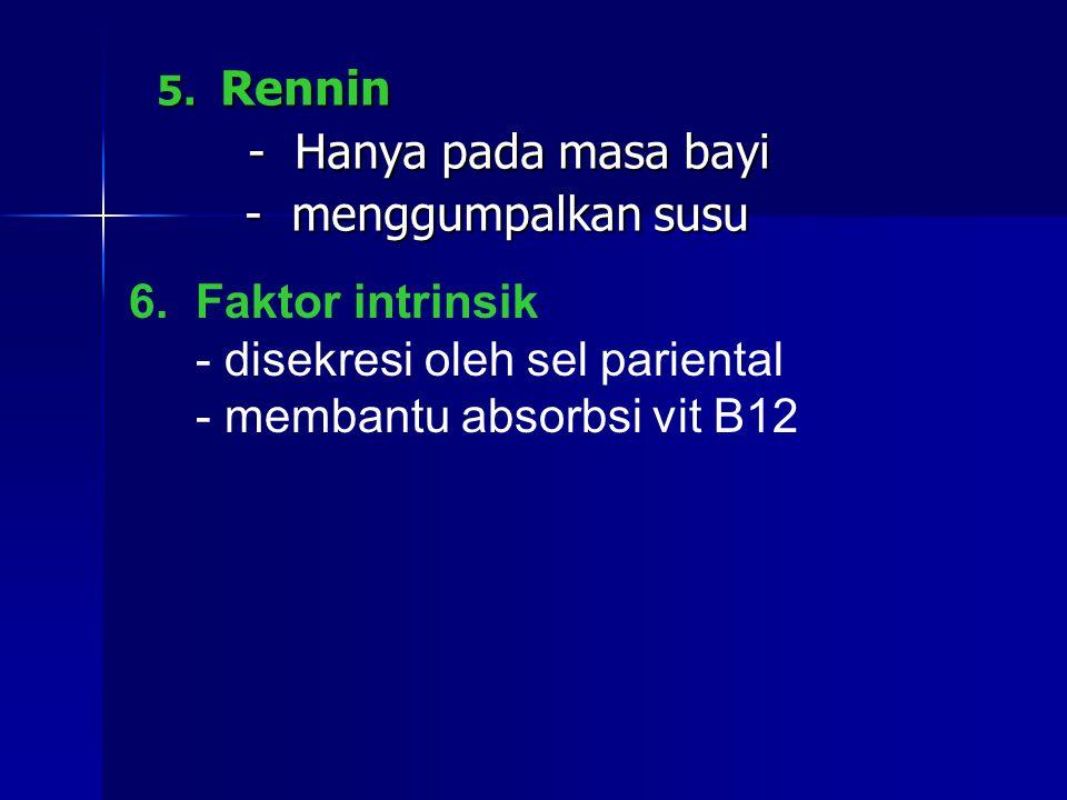 5.Rennin 5.
