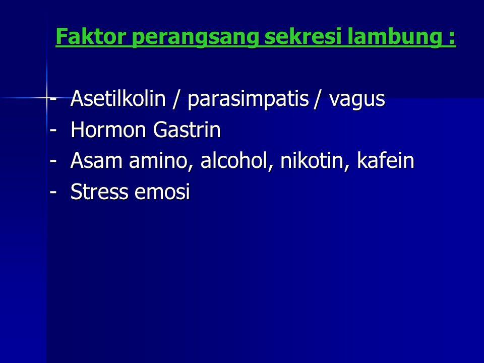 Faktor perangsang sekresi lambung : Faktor perangsang sekresi lambung : - Asetilkolin / parasimpatis / vagus - Hormon Gastrin - Asam amino, alcohol, nikotin, kafein - Stress emosi