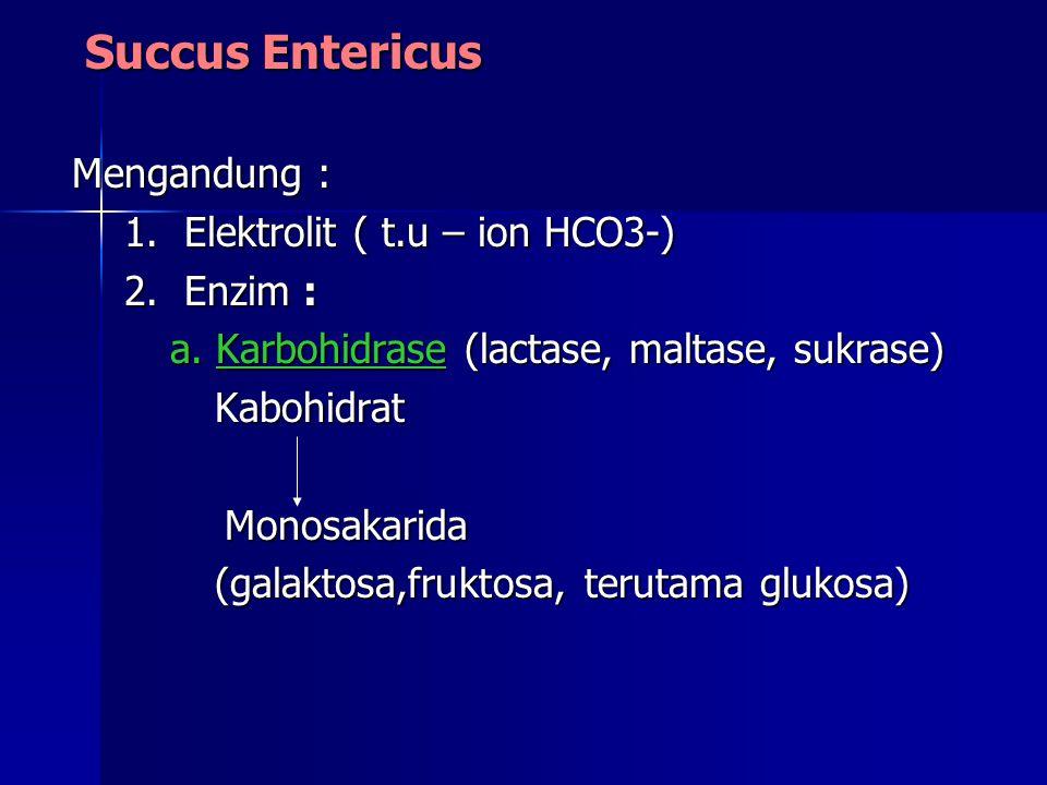 Succus Entericus Succus Entericus Mengandung : 1.Elektrolit ( t.u – ion HCO3-) 2.