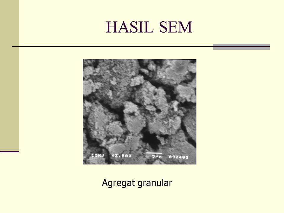 HASIL SEM Agregat granular