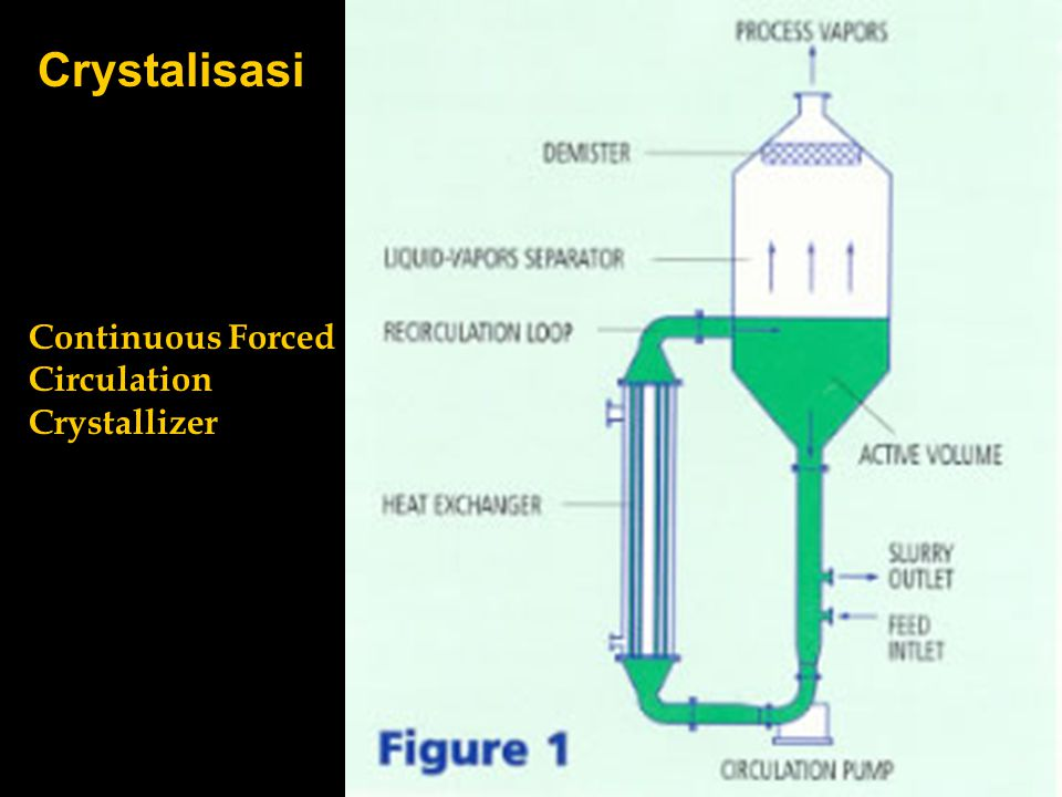 Crystalisasi Continuous Forced Circulation Crystallizer