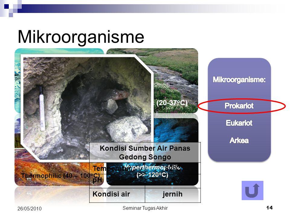 Seminar Tugas Akhir 14 26/05/2010 Mikroorganisme Thermophilic (40 – 100 o C) Pshycophilic (1-5 o C) Hyperthermophilic (>> 120 o C) Mesophilic (20-37 o C) Kondisi Sumber Air Panas Gedong Songo Temperatur82 o C pH6 Kondisi airjernih