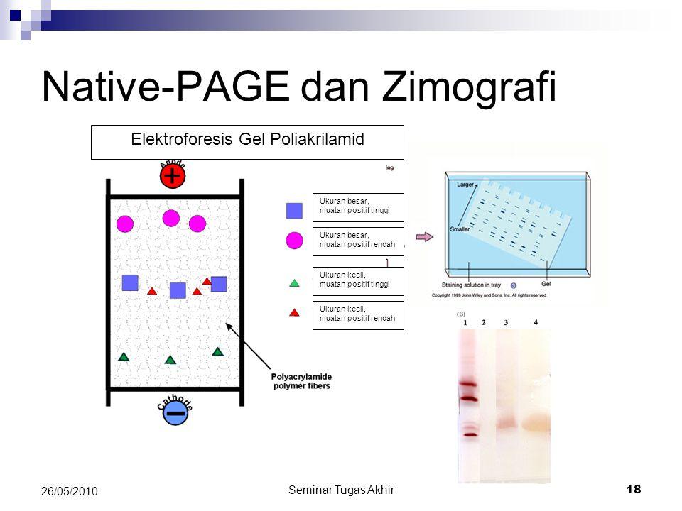 Native-PAGE dan Zimografi Seminar Tugas Akhir 18 26/05/2010 Elektroforesis Gel Poliakrilamid Ukuran besar, muatan positif tinggi Ukuran besar, muatan