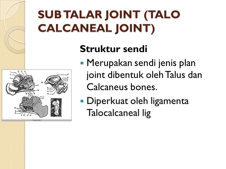 SUB TALAR JOINT (TALO CALCANEAL JOINT) Struktur sendi Merupakan sendi jenis plan joint dibentuk oleh Talus dan Calcaneus bones. Diperkuat oleh ligamen