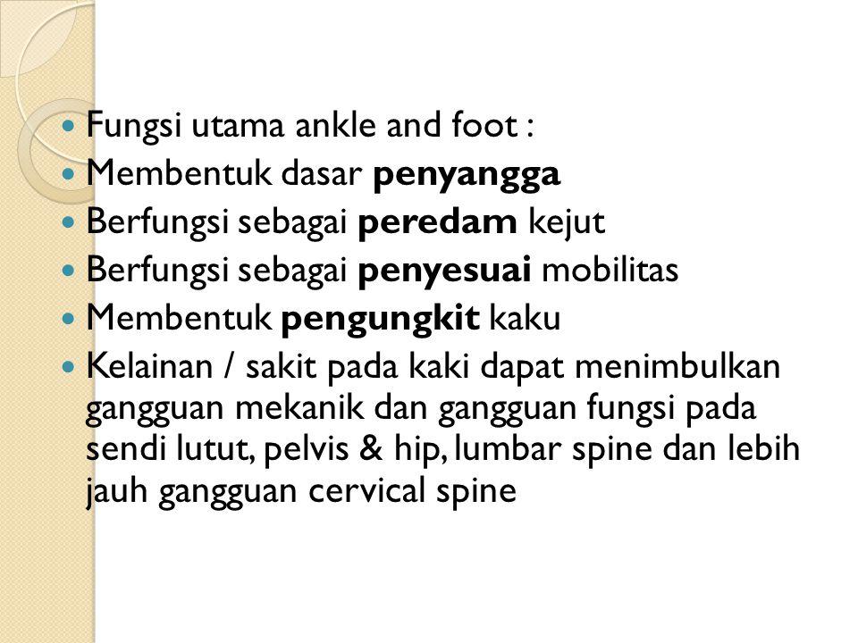 Fungsi utama ankle and foot : Membentuk dasar penyangga Berfungsi sebagai peredam kejut Berfungsi sebagai penyesuai mobilitas Membentuk pengungkit kak