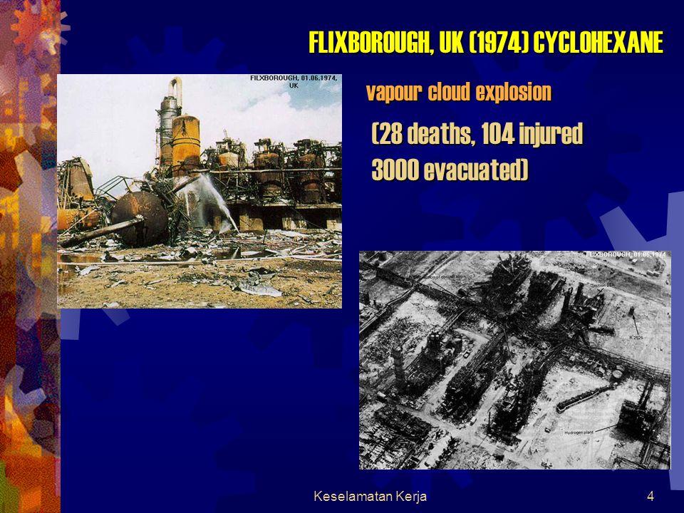 Keselamatan Kerja174 Hazid (Hazard Identification)  Merupakan proses identifikasi bahaya yang mungkin terjadi terhadap plant yang mencakup setiap bagian plant tersebut  Contoh bagian plant yang diidentifikasi resiko bahaya yang mungkin terjadi adalah storage tank dan pipe rack