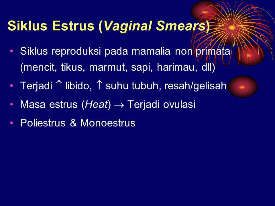 Siklus Estrus (Vaginal Smears) Siklus reproduksi pada mamalia non primata (mencit, tikus, marmut, sapi, harimau, dll) Terjadi  libido,  suhu tubuh,