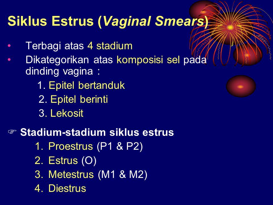 Siklus Estrus (Vaginal Smears) Terbagi atas 4 stadium Dikategorikan atas komposisi sel pada dinding vagina : 1. Epitel bertanduk 2. Epitel berinti 3.