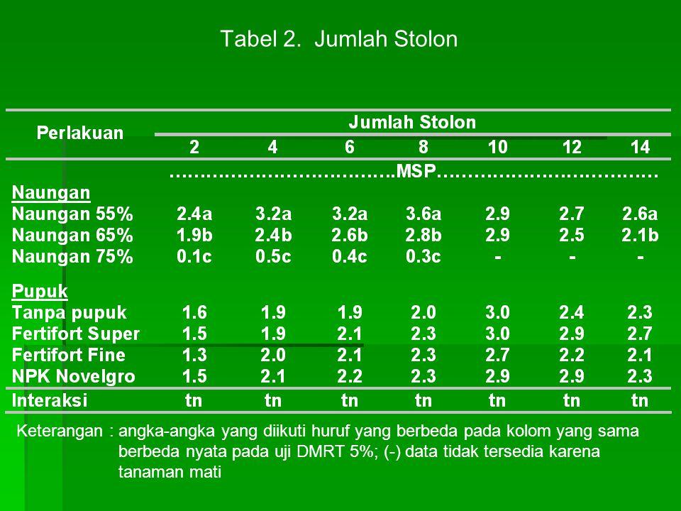 Tabel 2. Jumlah Stolon Keterangan : angka-angka yang diikuti huruf yang berbeda pada kolom yang sama berbeda nyata pada uji DMRT 5%; (-) data tidak te