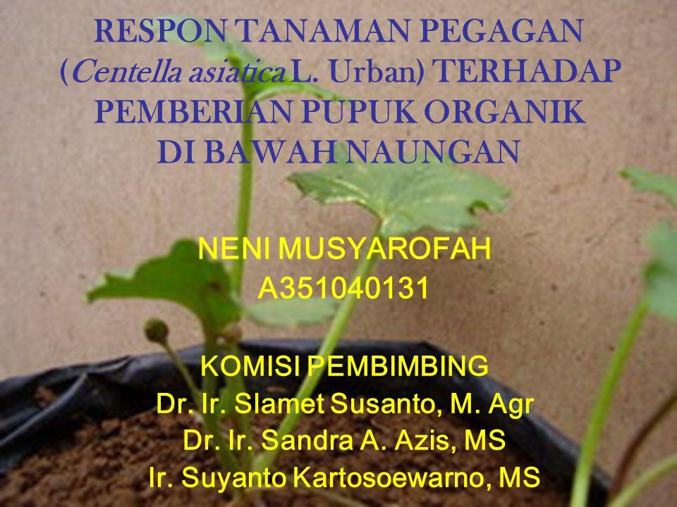 RESPON TANAMAN PEGAGAN (Centella asiatica L. Urban) TERHADAP PEMBERIAN PUPUK ORGANIK DI BAWAH NAUNGAN NENI MUSYAROFAH A351040131 KOMISI PEMBIMBING Dr.