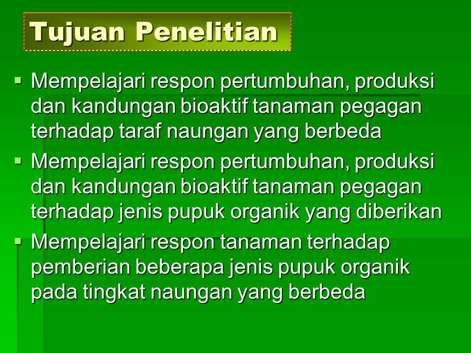 Bahan dan Metode  Waktu dan tempat : Bulan Februari – Mei 2006 di Kuntum Nurseries Bogor, Lab.
