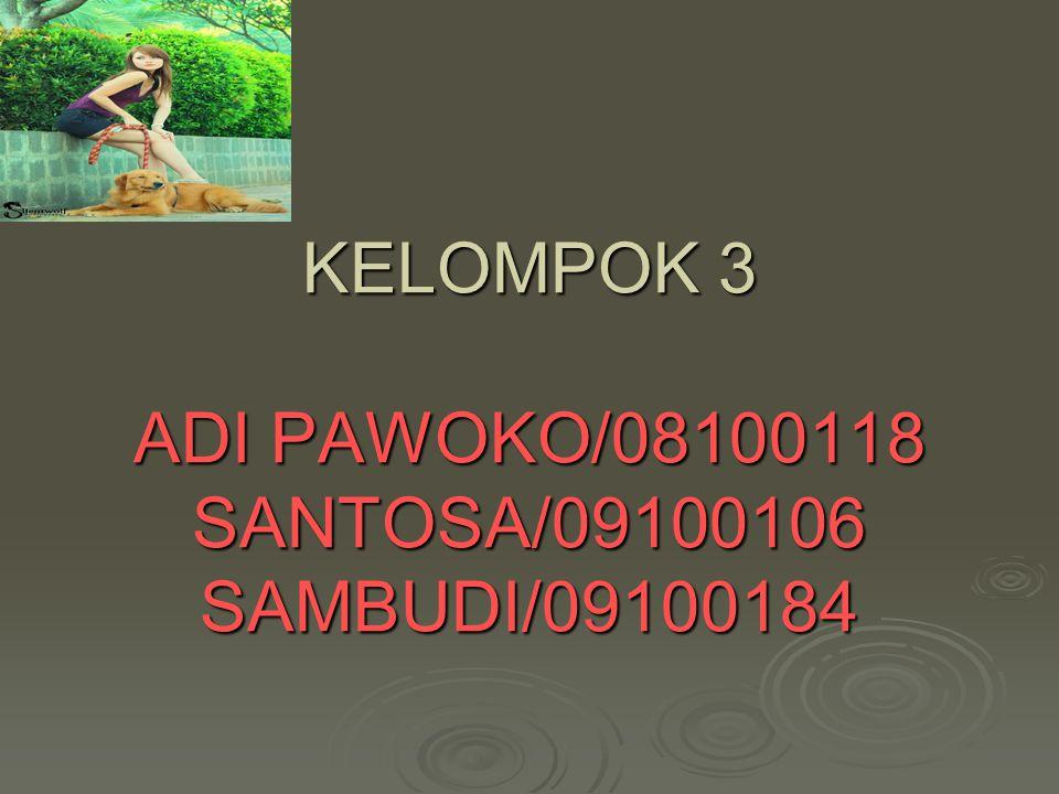 KELOMPOK 3 ADI PAWOKO/08100118 SANTOSA/09100106 SAMBUDI/09100184