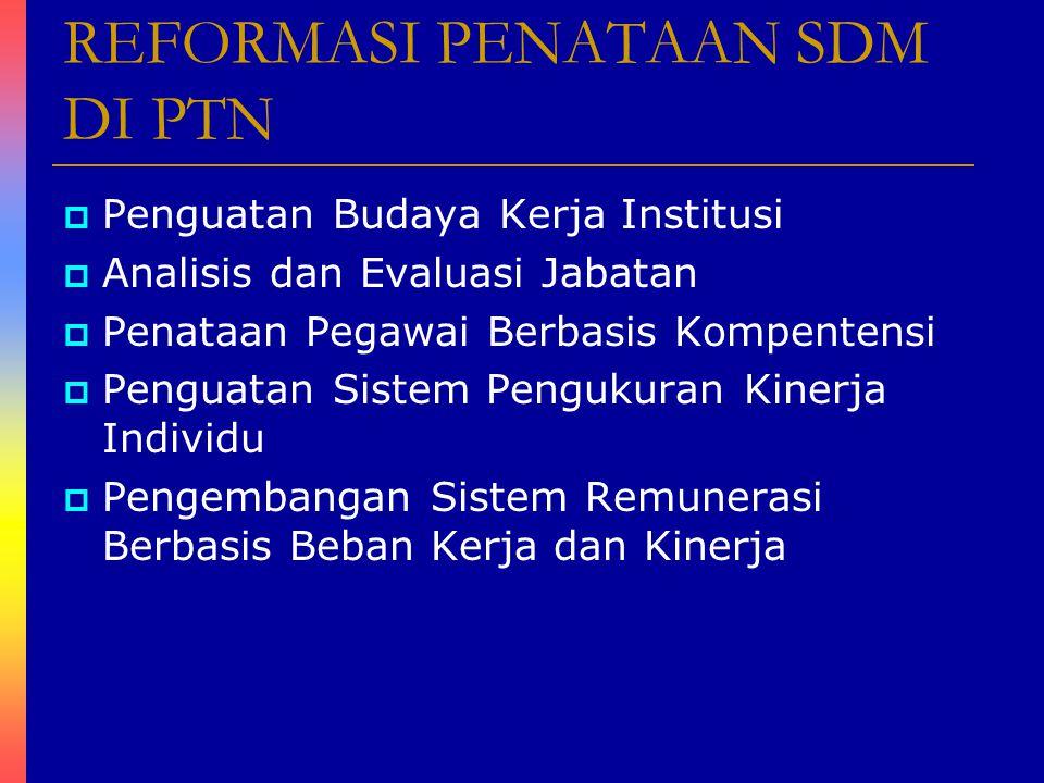 REFORMASI PENATAAN SDM DI PTN  Penguatan Budaya Kerja Institusi  Analisis dan Evaluasi Jabatan  Penataan Pegawai Berbasis Kompentensi  Penguatan S