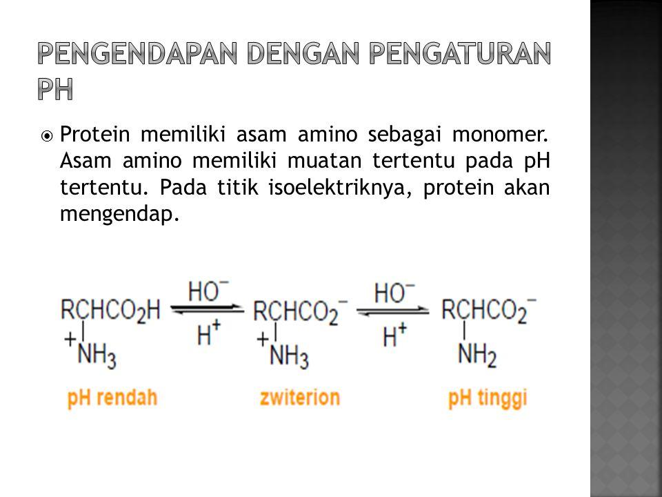  Garam amonium sulfat dalam konsentrasi tinggi akan berkompetisi dengan protein dalam mengikat air sehingga menyebabkan kelarutan protein berkurang