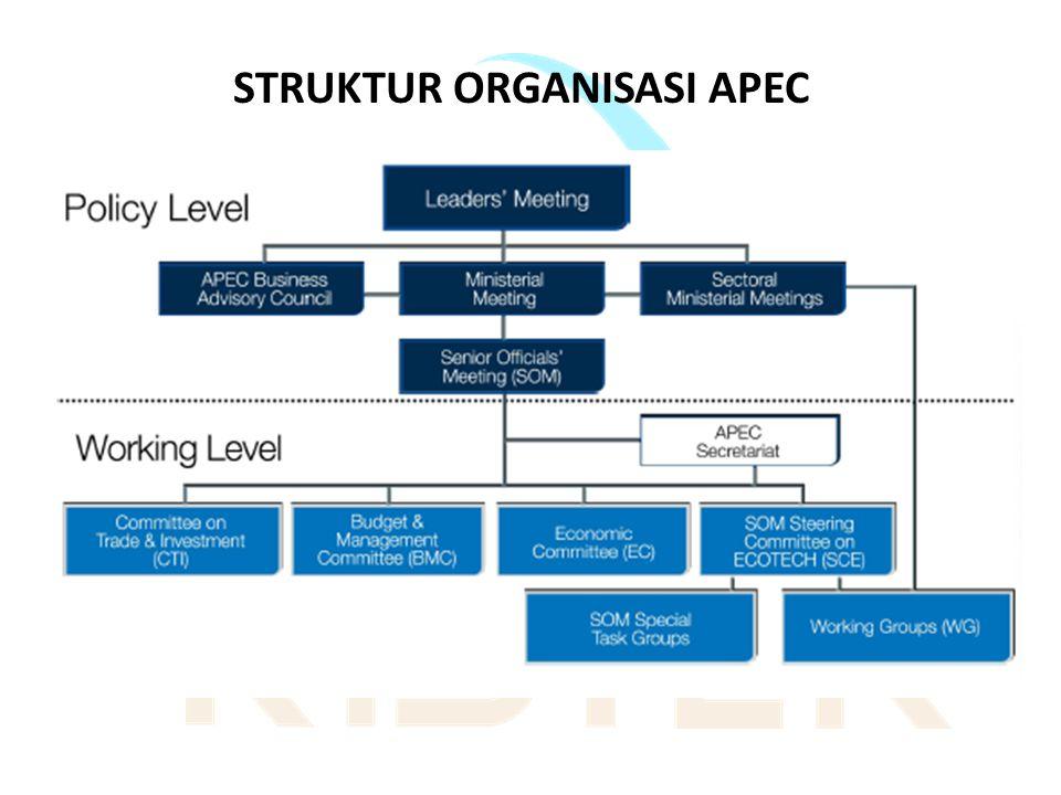 STRUKTUR ORGANISASI APEC