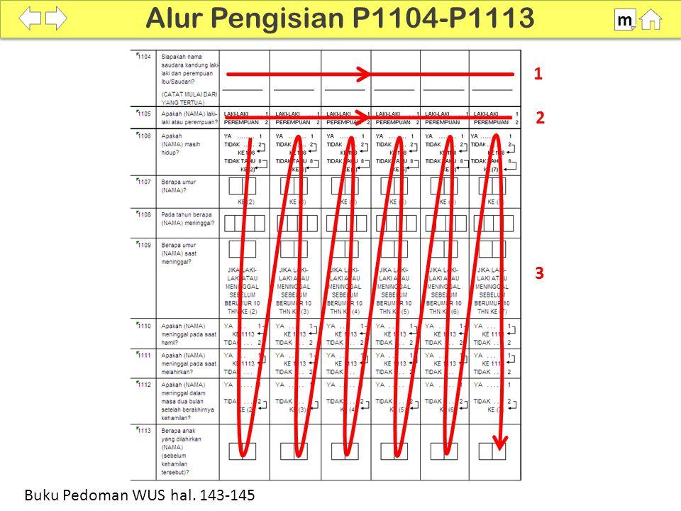 1 2 3 100% Alur Pengisian P1104-P1113 m Buku Pedoman WUS hal. 143-145