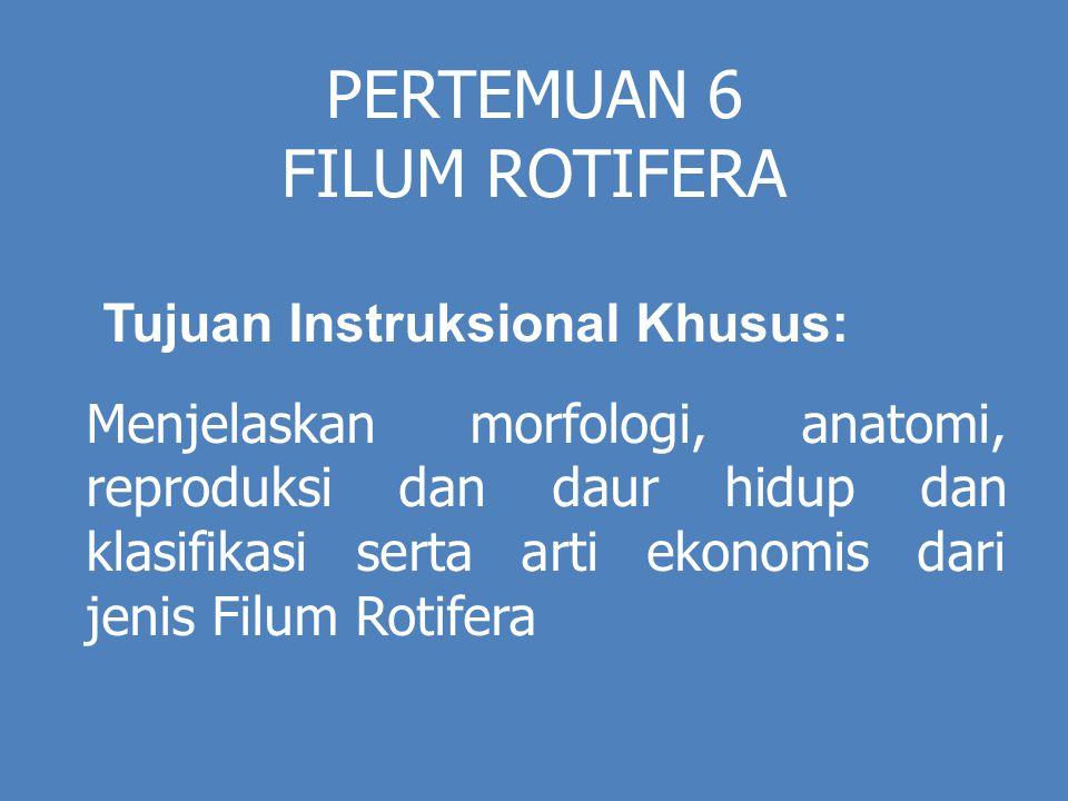 PERTEMUAN 6 FILUM ROTIFERA Tujuan Instruksional Khusus: Menjelaskan morfologi, anatomi, reproduksi dan daur hidup dan klasifikasi serta arti ekonomis dari jenis Filum Rotifera