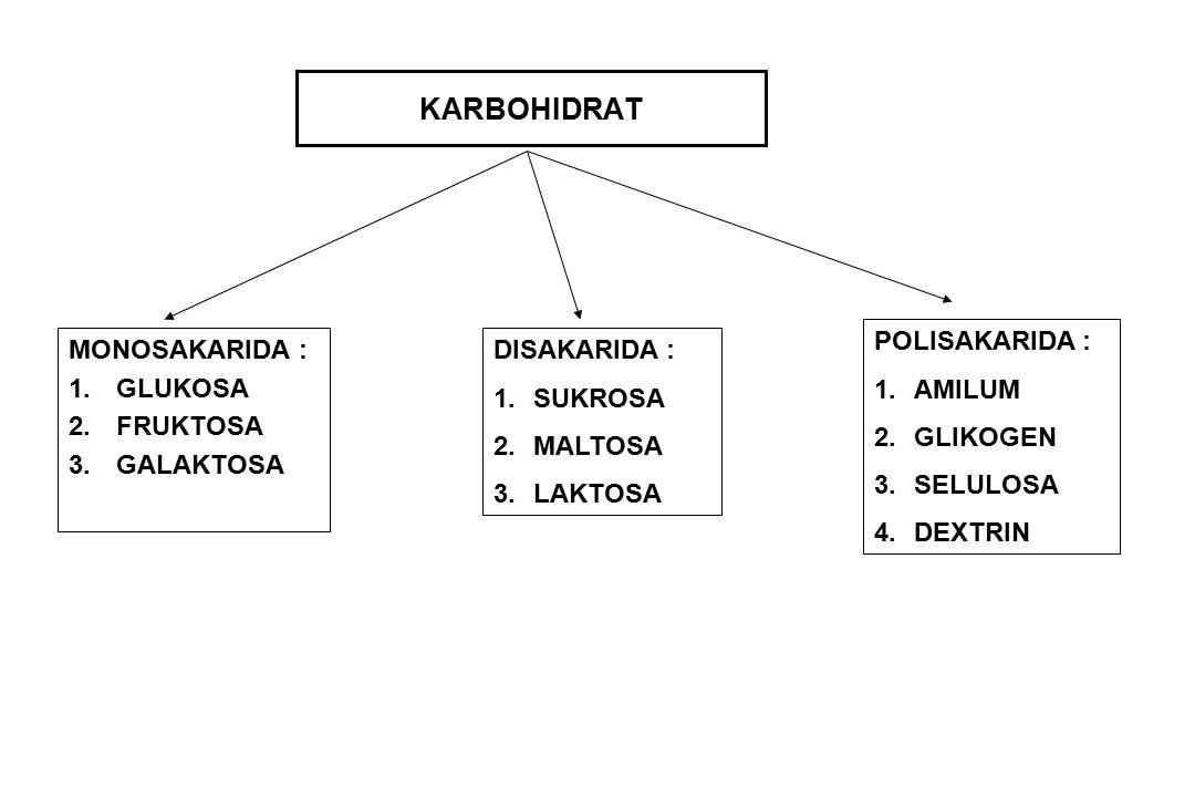 KARBOHIDRAT MONOSAKARIDA : 1.GLUKOSA 2.FRUKTOSA 3.GALAKTOSA DISAKARIDA : 1.SUKROSA 2.MALTOSA 3.LAKTOSA POLISAKARIDA : 1.AMILUM 2.GLIKOGEN 3.SELULOSA 4.DEXTRIN
