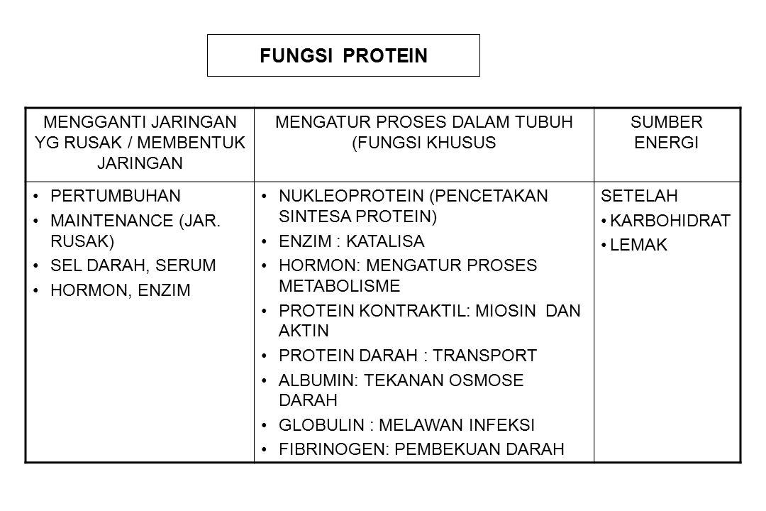 FUNGSI PROTEIN MENGGANTI JARINGAN YG RUSAK / MEMBENTUK JARINGAN MENGATUR PROSES DALAM TUBUH (FUNGSI KHUSUS SUMBER ENERGI PERTUMBUHAN MAINTENANCE (JAR.