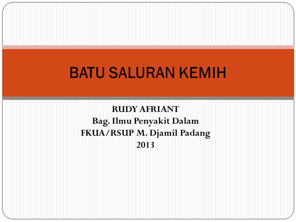 RUDY AFRIANT Bag. Ilmu Penyakit Dalam FKUA/RSUP M. Djamil Padang 2013 BATU SALURAN KEMIH